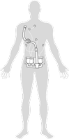 harness drawing